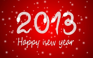 2013 Happy New Year-Eylizar langkawi homestay