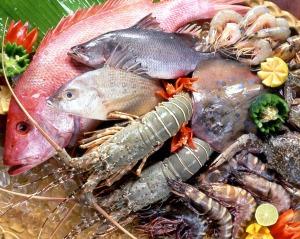 Selection seafood restaurant at langkawi